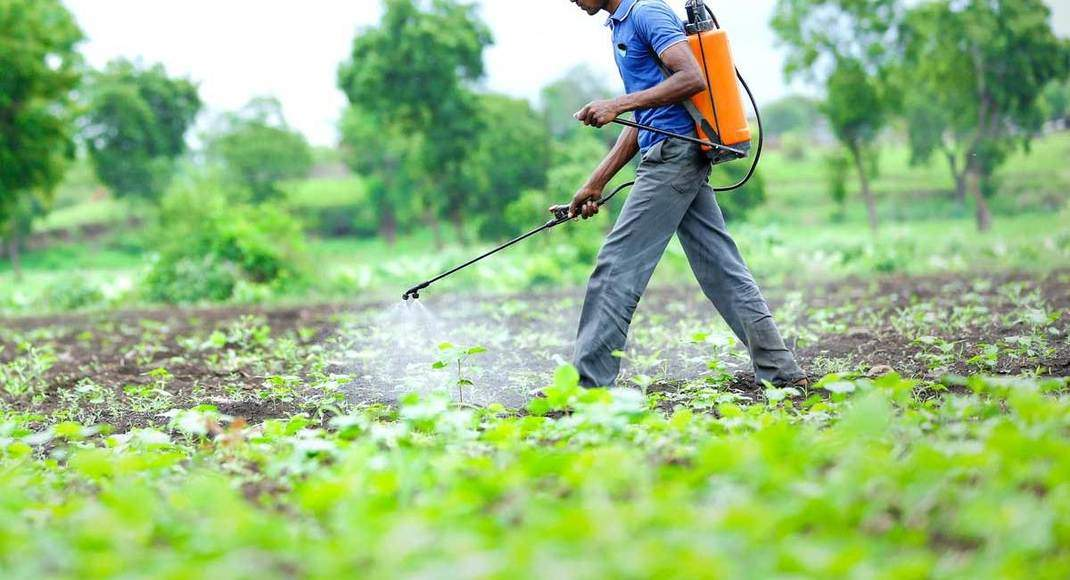 India Pesticides on growth track in promising agro-chemicals sector